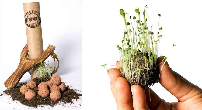 Bombas de sementes. Para saber + http://www.hypeness.com.br/2012/07/bomba-de-sementes-e-a-jardinagem-de-guerrilha/  Para saber como faz: http://www.coletivoverde.com.br/bombas-de-semente/