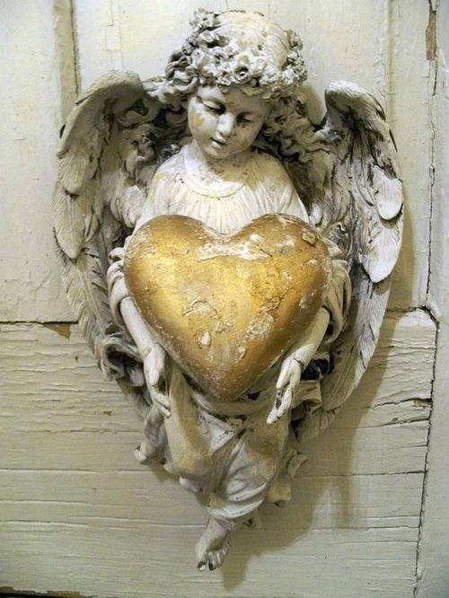 ❥ angel. heart.