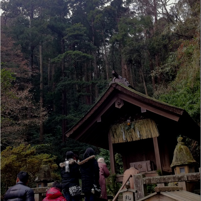 A corner of Miho shrine, Japan, where my soul always wishes to go.