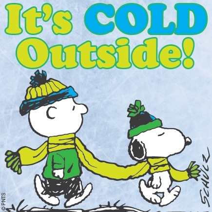 Image result for peanuts gang winter