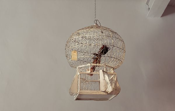Bird Cage 1900S Italian!!!!