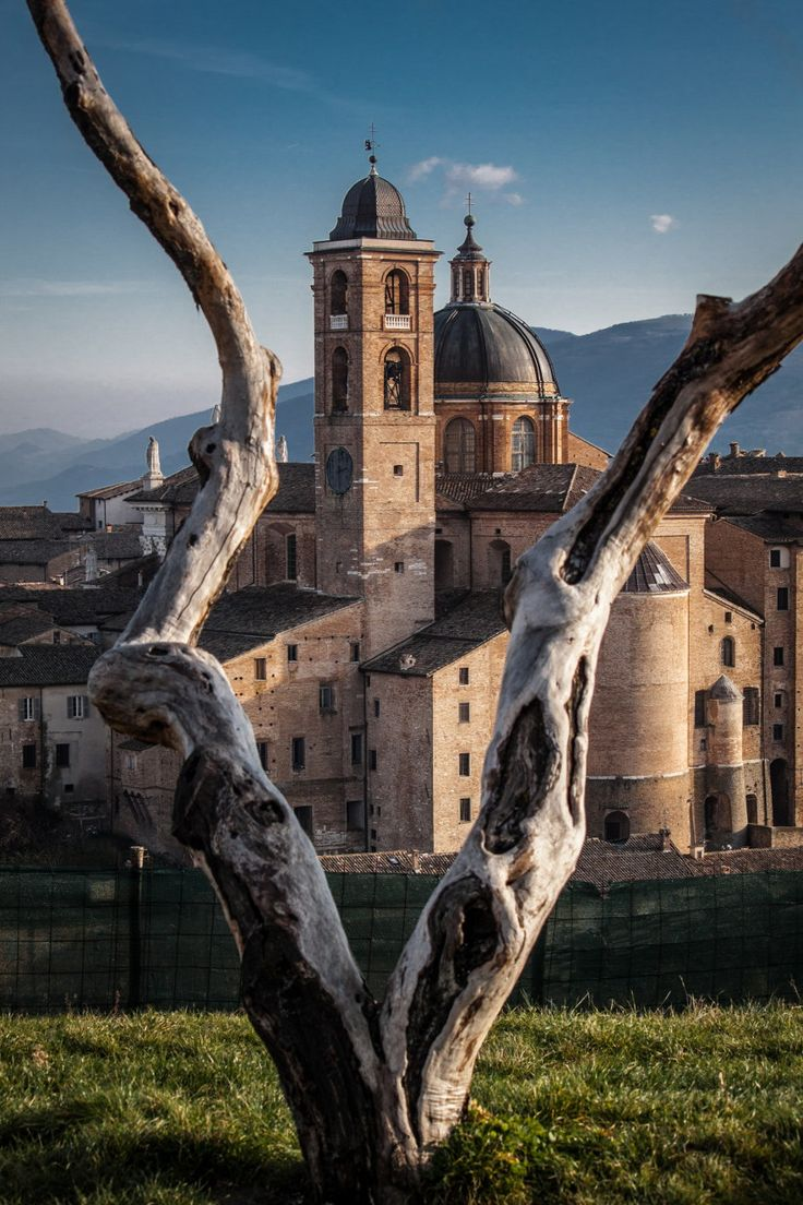Il Duomo, Urbino Pesaro and Urbino Marche Italy