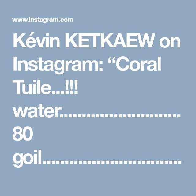 "Kévin KETKAEW on Instagram: ""Coral Tuile...!!! water...........................80 goil................................30 gflour.............................10…"""