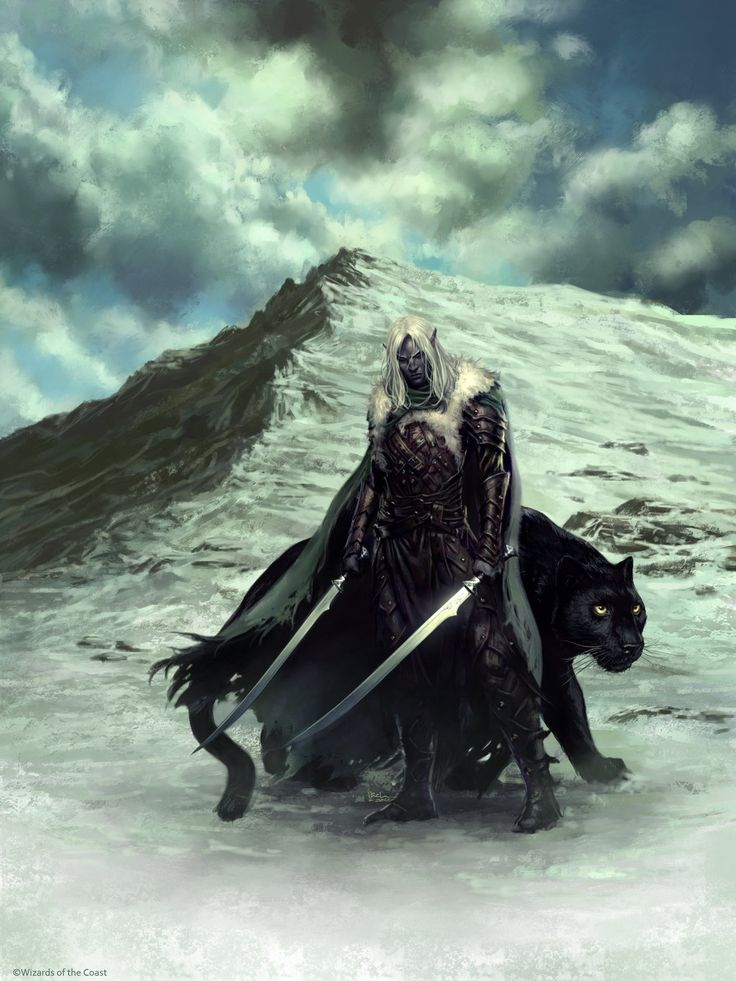 Drizzt Do'Urden Ranger | Ilacha on DeviantArt
