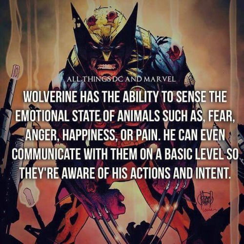 Daily facts #marvel #wolverine #allthingsdcmarvel -Malvin by...