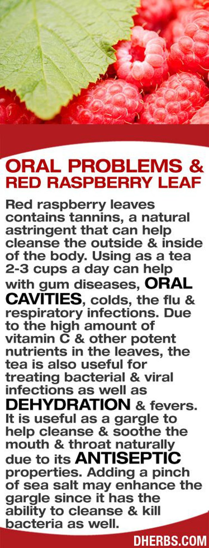 Oral Problems And Red Raspberry Leaf