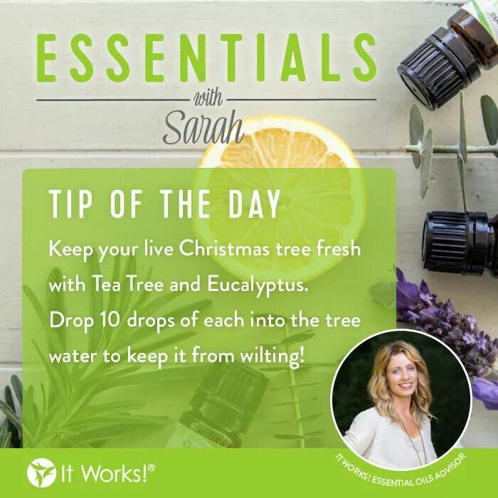 For those of us who could get by without vacuuming pine needles everyday until Christmas... there's an oil for that! We love this tip from Sarah! It Works! Essential Oils #FTW ! #WeMakeOilsCool #yourwelcome