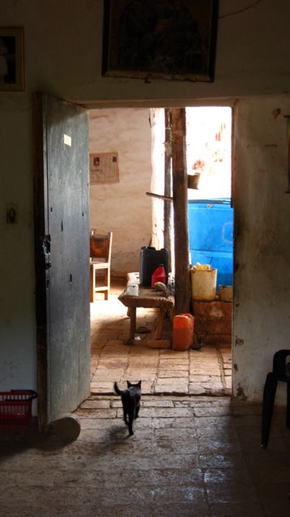 The floors, the stool (taburete), the cat, the wooden beams, the walls ... of those times. The basket, chair and tanks (those plastic) are of this time