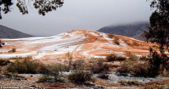 サハラ砂漠に雪が積もる。実に37年ぶり(アルジェリア)