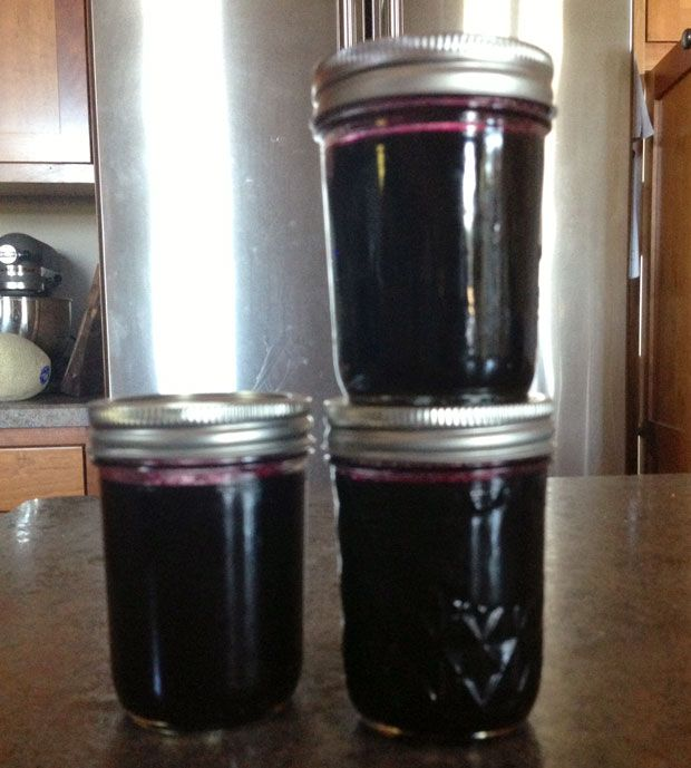 low sugar grape jelly recipe,  grape jelly recipe, wild grape jam, grape season, how to make grape jell with no sugar, the handmade girl