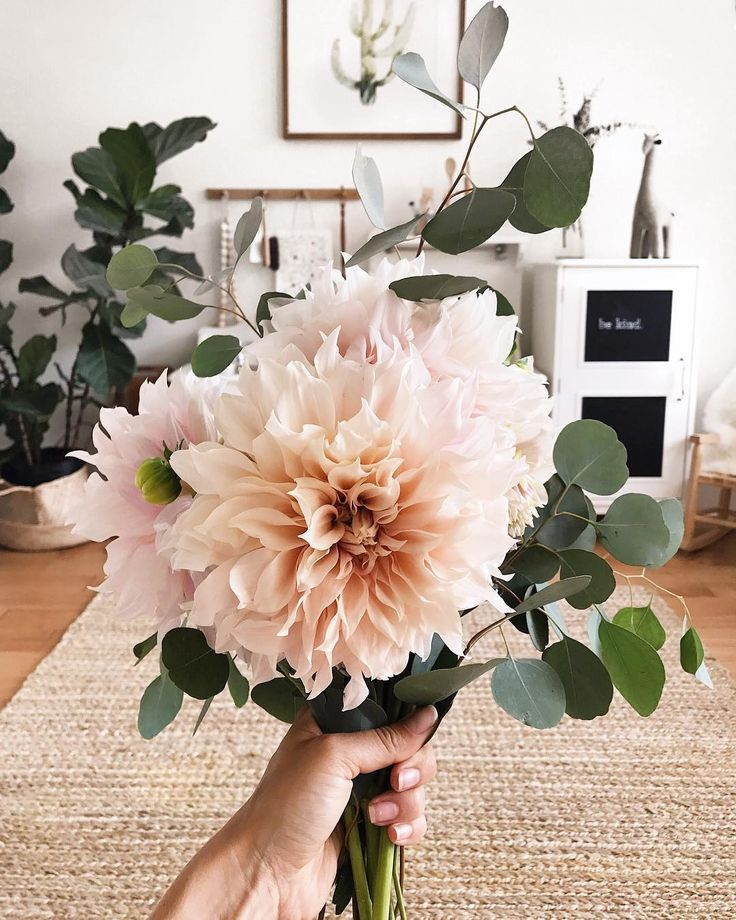 Inspirational Quotes On Pinterest: Best 25+ Dahlia Flowers Ideas On Pinterest