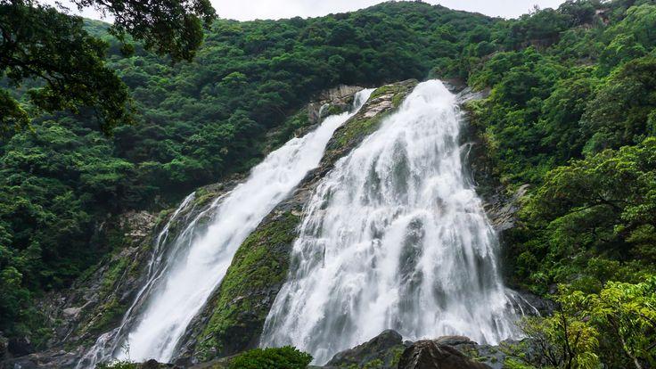 Ohko Waterfall Yakushima