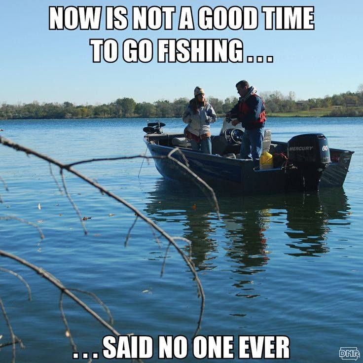 22 best fishing quotes images on pinterest fishing humor for Is the fishing good today