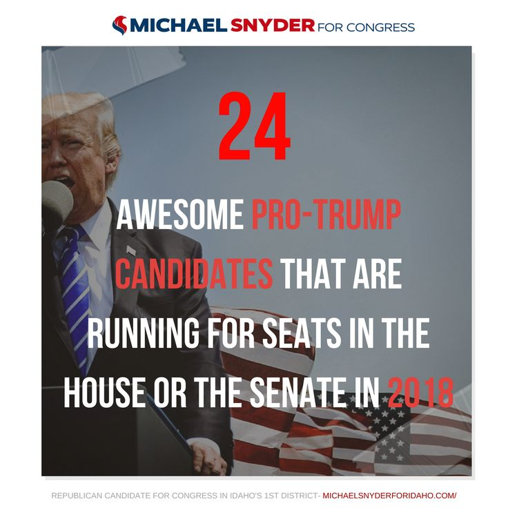 25 Best Ideas About Donald Trump House On Pinterest: Best 25+ Pro Trump Ideas On Pinterest