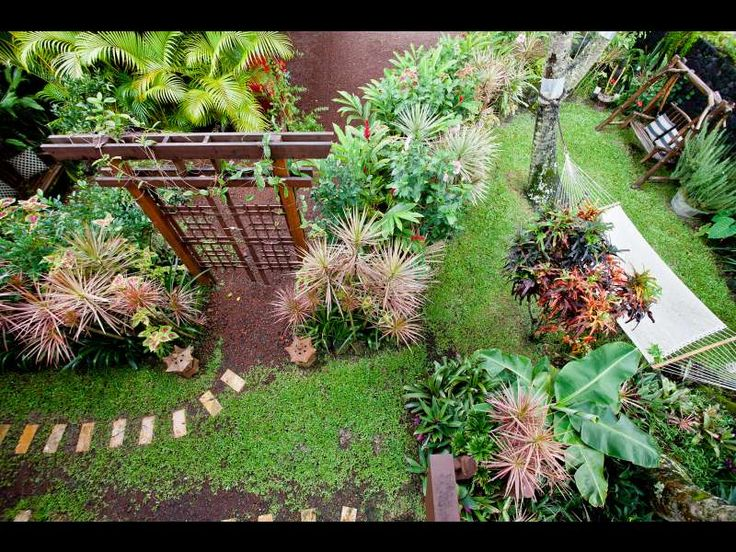 22 best images about hawaii garden plans on pinterest | gardens