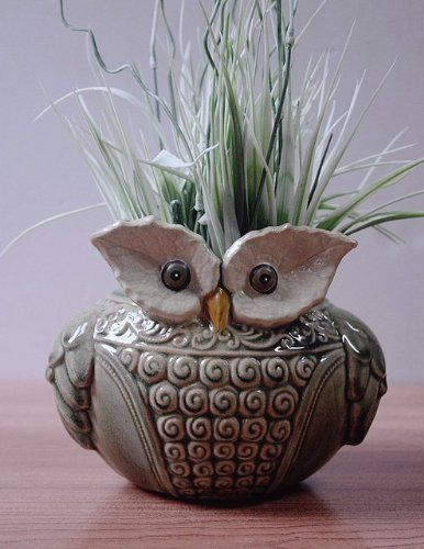 Delightful Ceramic 'Wise Old Owl' Vase or Planter for Indoor or Outdoors Goodman&Wife http://www.amazon.com/dp/B00DNN9J0S/ref=cm_sw_r_pi_dp_Bi2aub1R3PSEJ