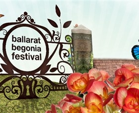 Ballarat has lots of festivals. The begonia festival has been around for more than 60 years.