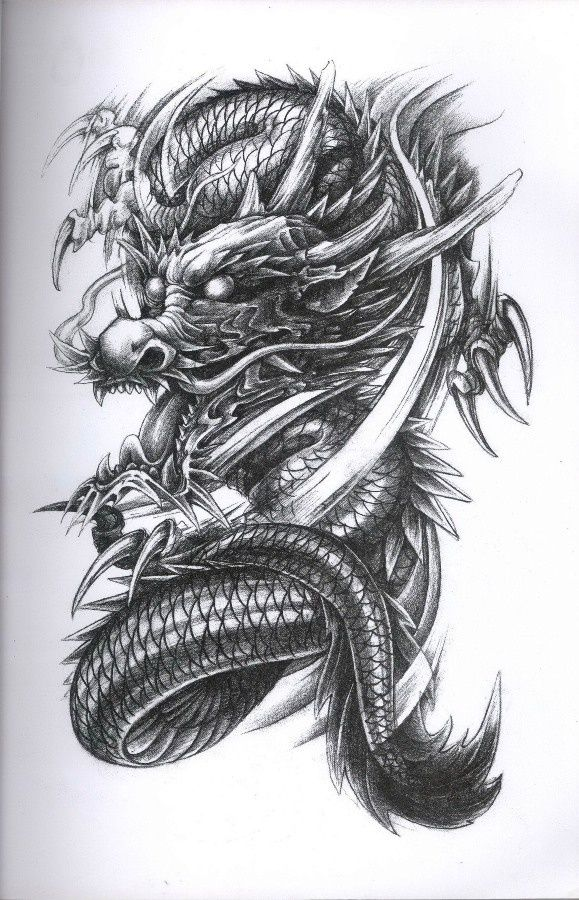 Dragon Tattoo Diseno  #dragon #tattoos #tattoo