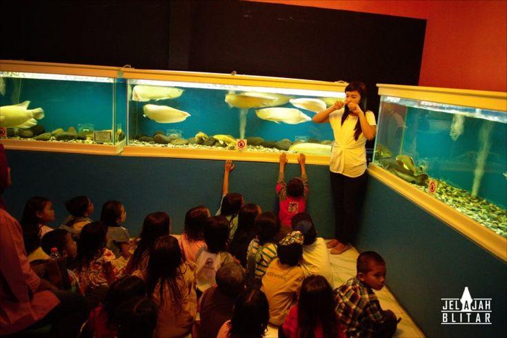 Fish Garden Blitar Adalah Salah Satu Wisata Edukasi Ikan Air