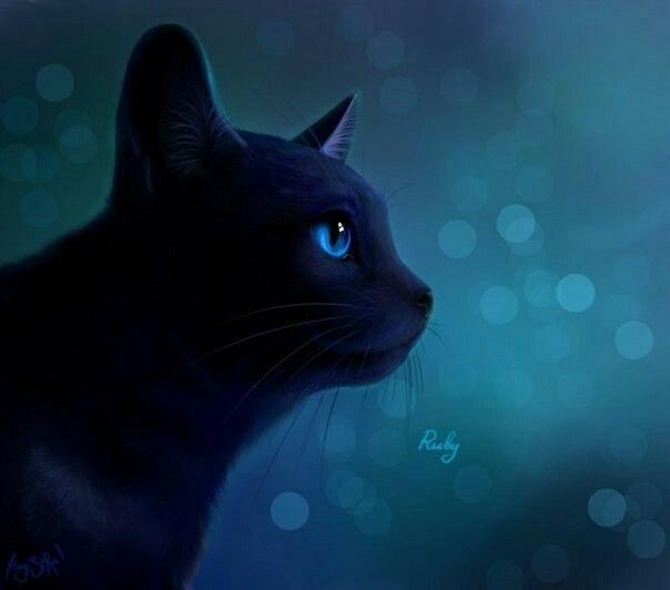 Лебедя прикольные, коты воители картинки синяя звезда
