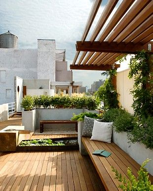 Rooftop Garden: Wooden Bench, Modern Pergola, White+Wood+Green