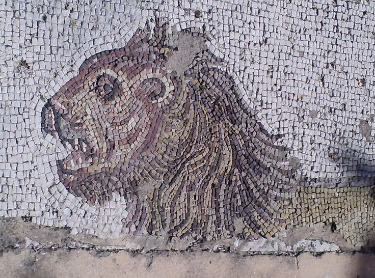 Fragment of a Greek mosaic of the Nemean lion at the. Archaeological Museum of Paros, Greec