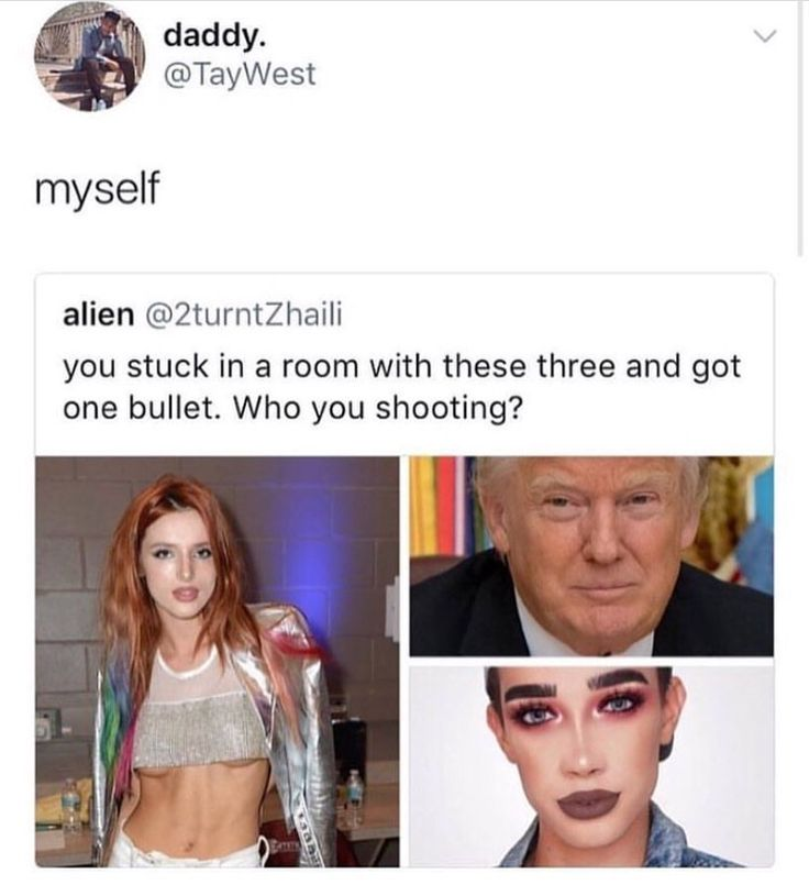 I hate all of them. Bella because she's just ew and is a terrible role model. Trump because he's a lying, racist, sexist, racist, and everything else in between. And James Charles because he's low key racist and became a famous makeup artist because of a photoshop pic?!?!