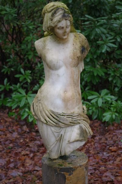 Buste Venus - Estimation gratuite et expertise de sculpture, marbre, bronze, bois, platre, terre cuite | Authenticité