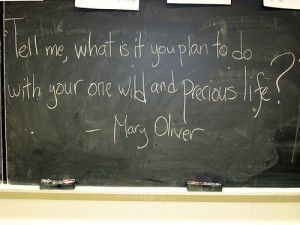 life: Wild, Inspiration, Quotes, Plan, Wisdom, Thought, Mary Oliver, Maryoliver, Precious Life