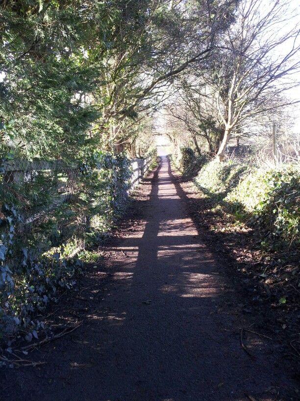 Walks in North Devon