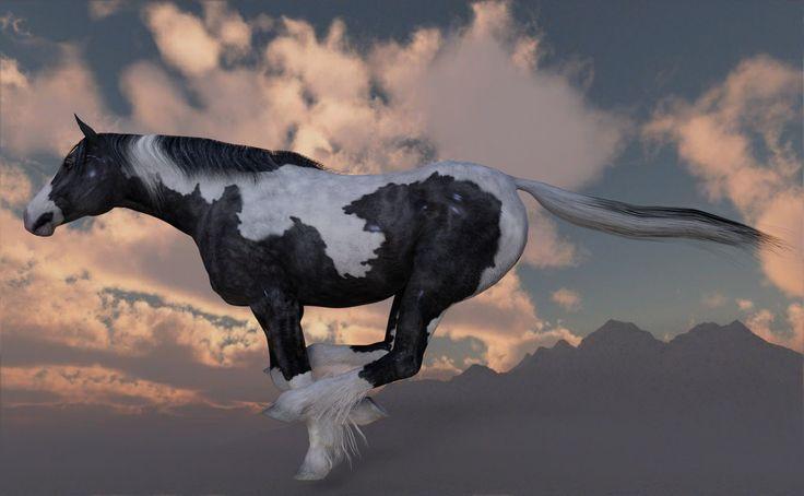 https://flic.kr/p/HFR7ty   Horse Running   artwork produced by: JoreJj Z. Elprehzleinn  http:Elprehzleinn.ca credits: DazStudio 4.9, Daz3D.com, Vue