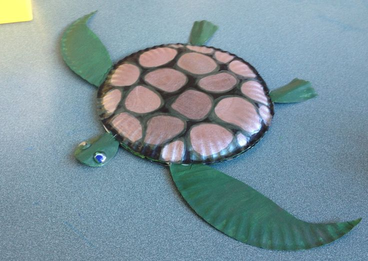 ... paper plate turtle motor 17 best images about sea turtles on sea turtle ... & paper plate turtle motor - paper plate turtle motor po?et obr 225 ...