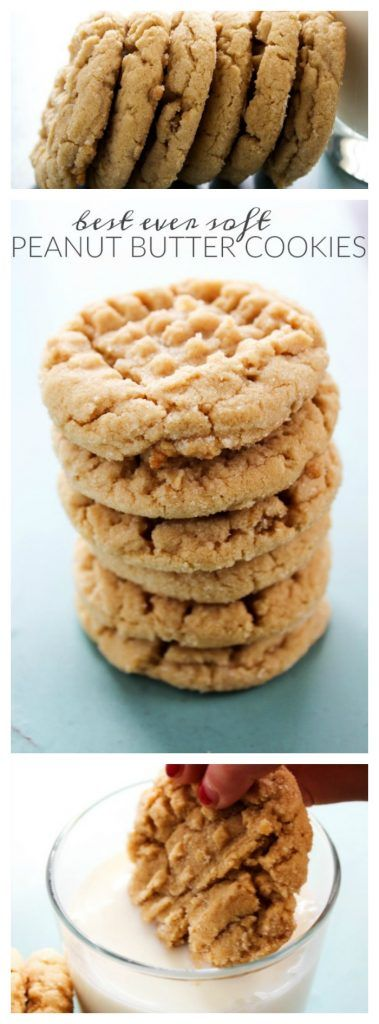 Best Ever Soft Peanut Butter Cookies Remarkable stories. Daily