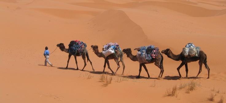 Partir au Maroc pour 40 euros avec Jet4you!