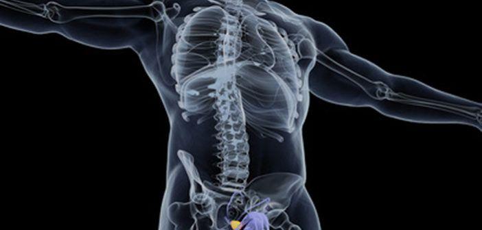 Dávkování a použití zinku v prevenci i při rakovině prostaty. Jak dávkovat zinek, jaká je nejlepší forma suplementace a pár praktických typů.