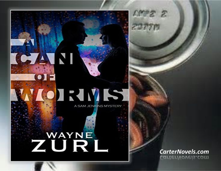 Featured Book at INDIE BOOK SOURCE --- by Author Wayne Zurl