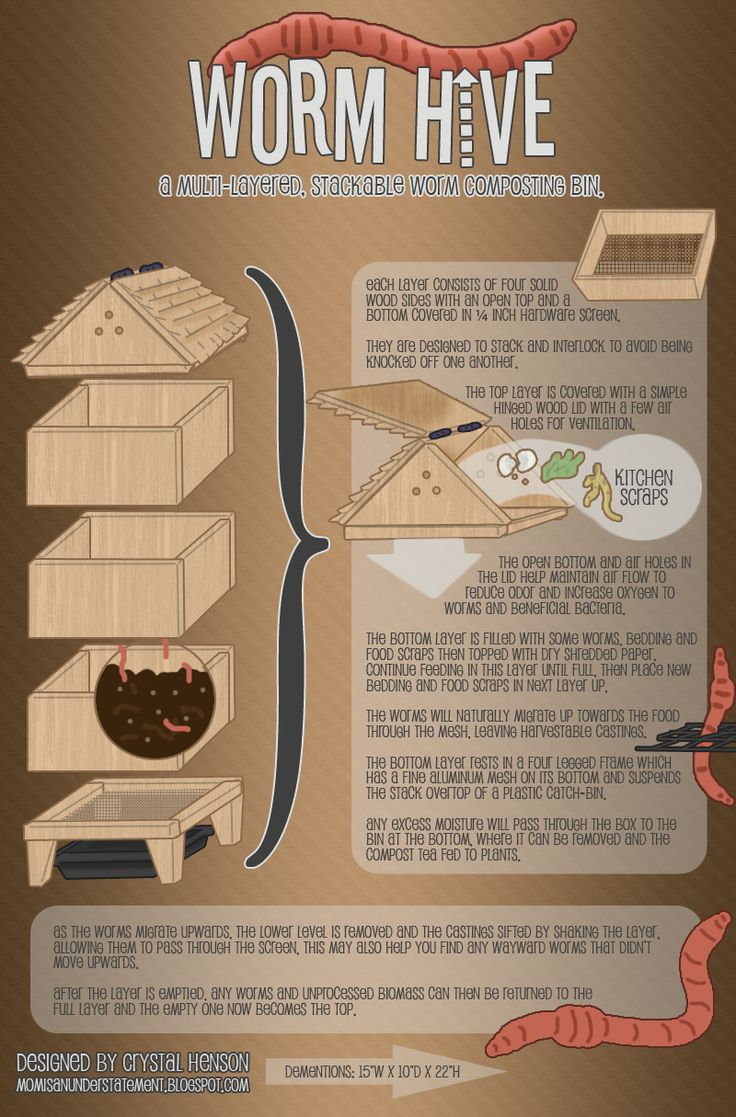worm_hive__a_multi_layered__stackable_worm_bin_by_crystalsmuse-d4ugwbz.png (800×1215)