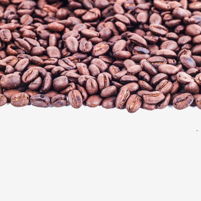 Frame By Coffee Bean Coffee Frame Bean Png Transparent Clipart Image And Psd File For Free Download In 2020 Gourmet Coffee Beans Beans Coffee Beans