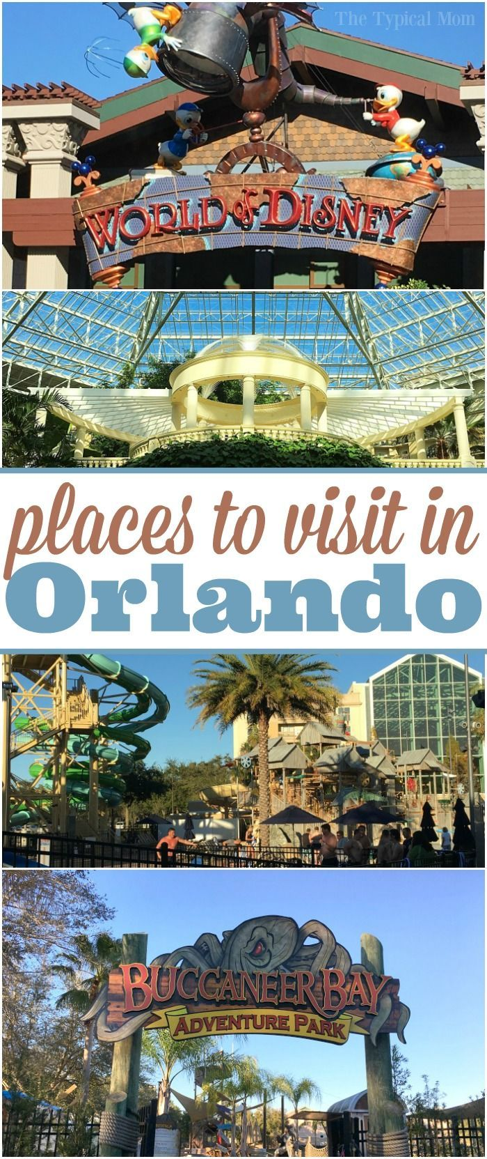 The best places to visit in Orlando Florida and where to go to get discount tickets to amusement parks there as well as cheap hotel stays. via @thetypicalmom