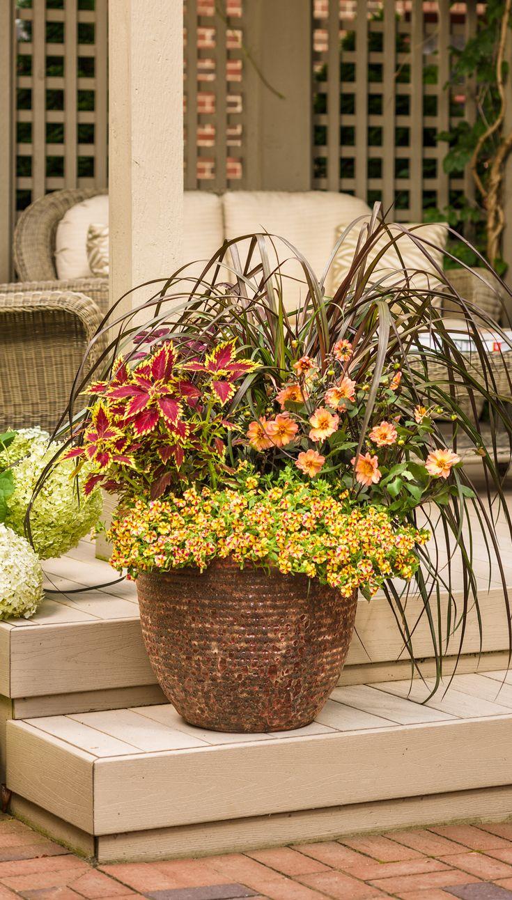 49 best Garden DIY Ideas images on Pinterest | Container garden ...