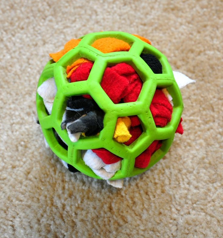 If your fur baby has a habit of ripping apart stuffed animals, use a Hol-ee Roller Ball stuffed with a treat surrounded by scraps of fabric. Your dog will spend all day yanking out the fabric to get to the treat, and you can just re-stuff it for next time, and your only extra expense is dog treats.  Semi-destructible stuffed toy
