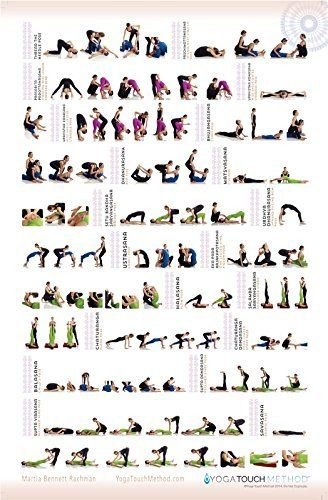 Yoga's Touch Hands On Adjustments, Alignment & Verbal Cues Quick Reference Guide