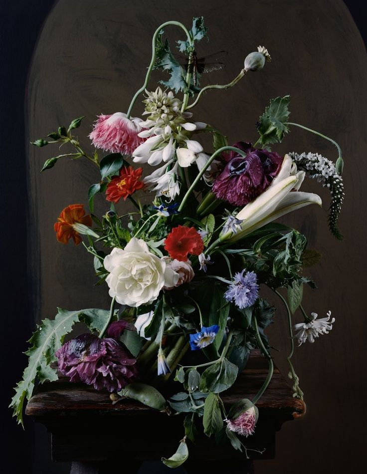 floral-still-life-sharon-core-photography-old-masters-paintings-4