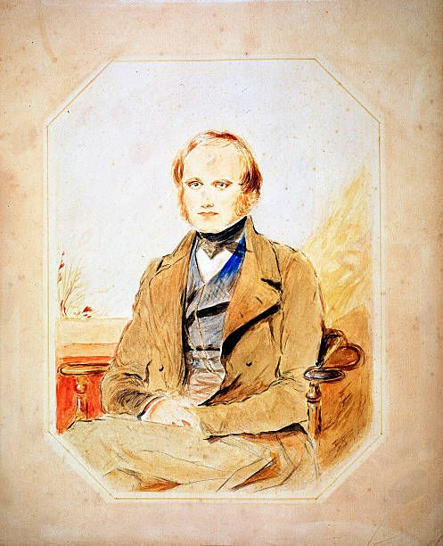 Charles Darwin English naturalist Darwin as a young man Darwin was employed as naturalist on HMS Beagle from 18311836 He first made his name as a...