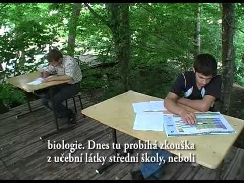 Ruská rodová škola.