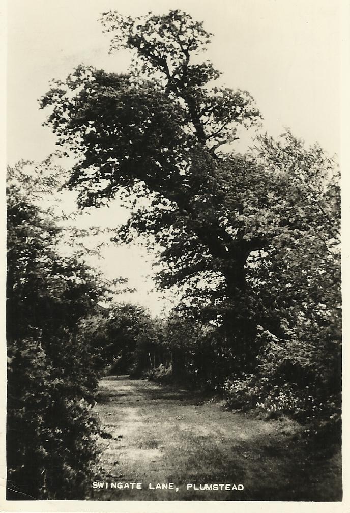 Swingate Lane, Plumstead