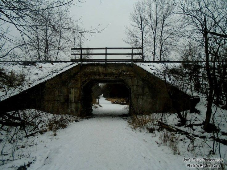 CP Overpass over the Trails at potters Creek Conservation