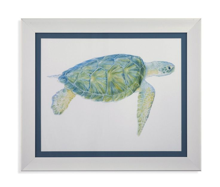Tranquil Sea Turtle Framed Print