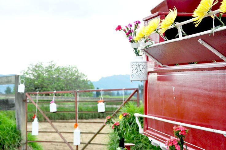 Faroles, colores y muchas flores en medio de un criadero de caballos