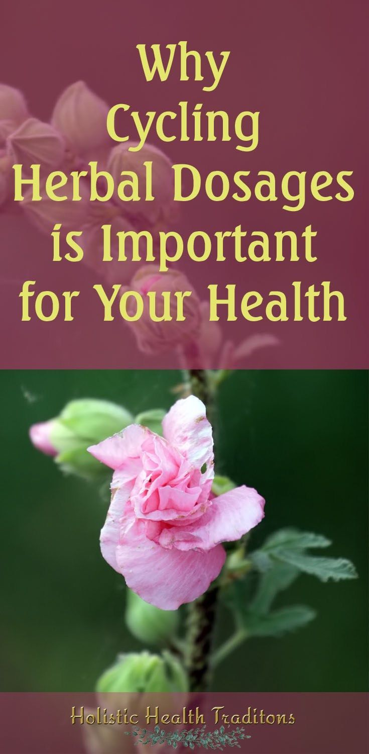 Center for holistic herbal therapy - Make Sure Your Herbal Remedies Are Doing Their Very Best For Your Health Find Out